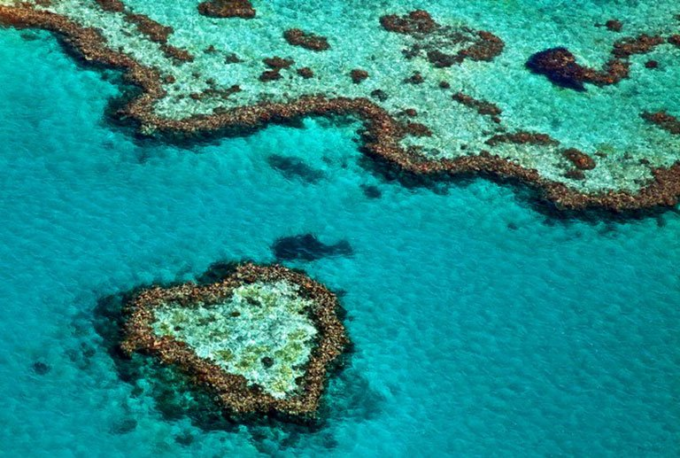 The Great Barrier Reef Australia