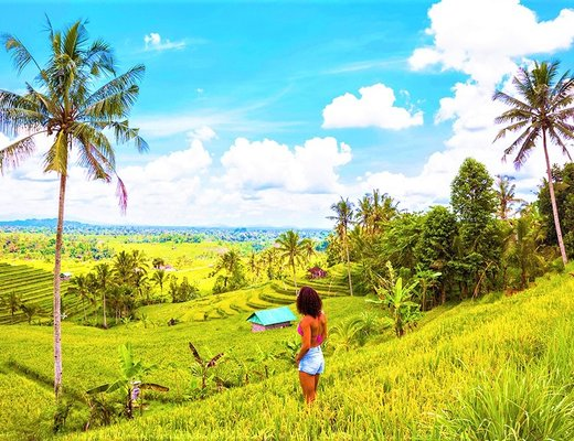 Travelling in Bali Gap Year: Discover the Indonesian ...